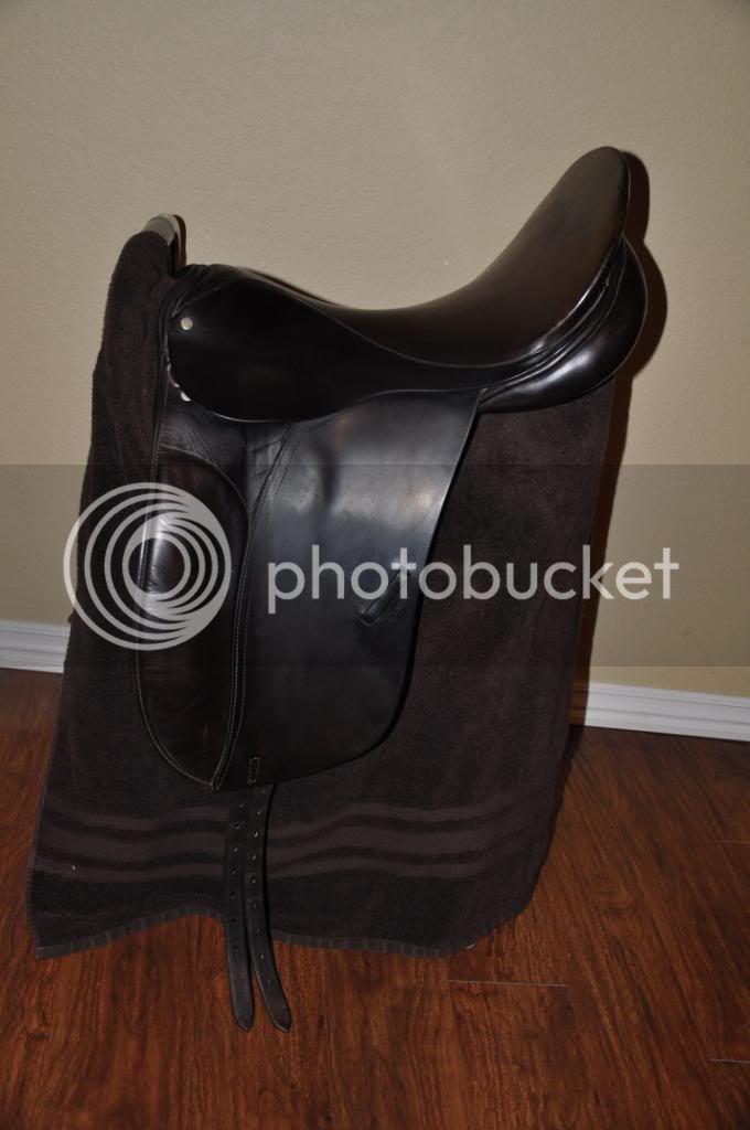 Saddles for Sale! DSC_0560