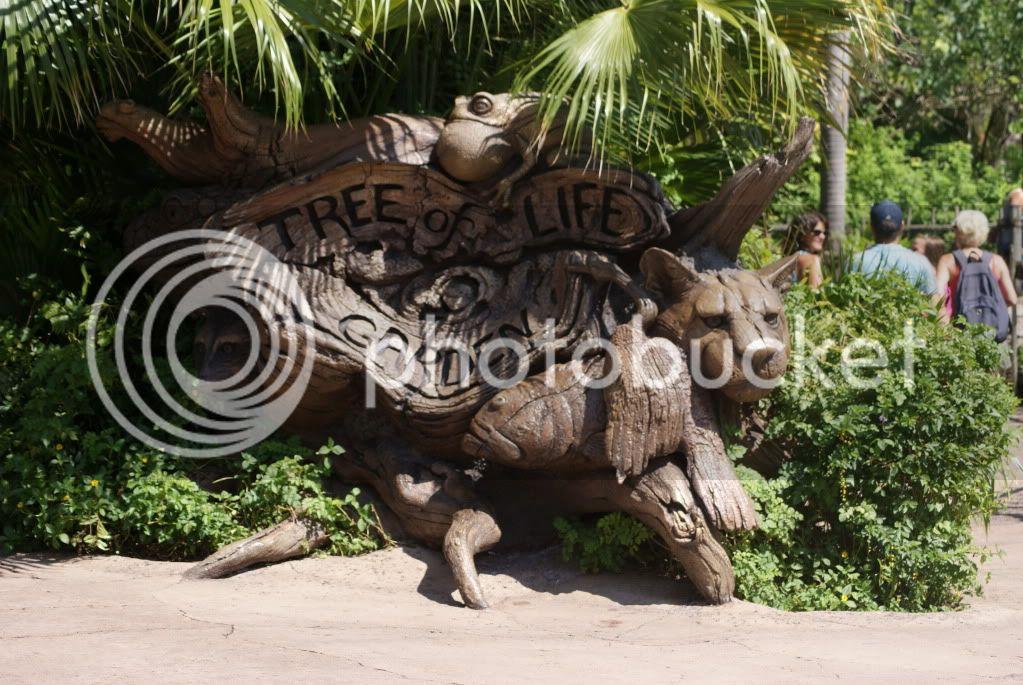 [Walt Disney World Resort] Voyage du 24 juillet au 12 aout 2010 - Page 2 DSC00031