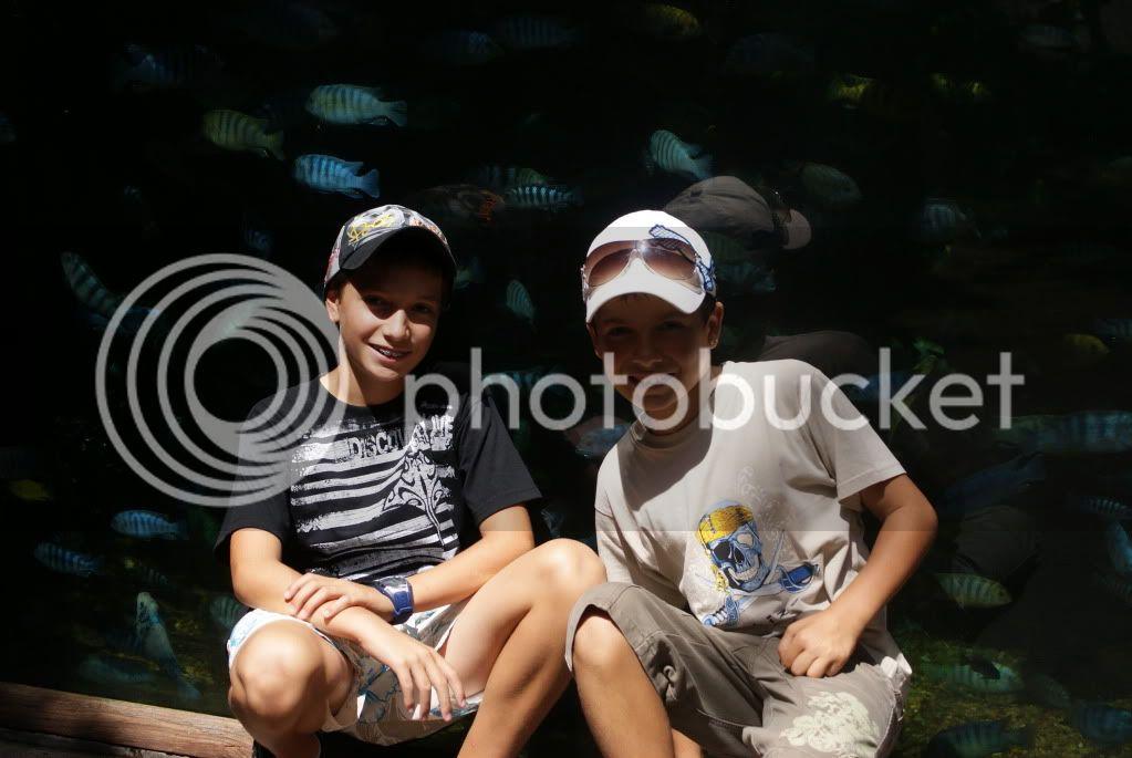 [Walt Disney World Resort] Voyage du 24 juillet au 12 aout 2010 - Page 2 DSC00071