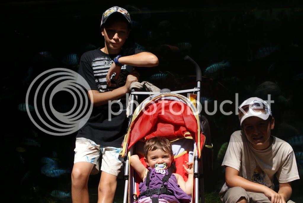[Walt Disney World Resort] Voyage du 24 juillet au 12 aout 2010 - Page 2 DSC00073