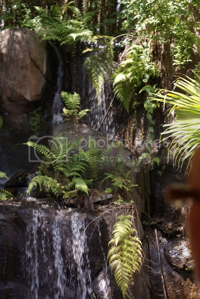 [Walt Disney World Resort] Voyage du 24 juillet au 12 aout 2010 - Page 2 DSC00207