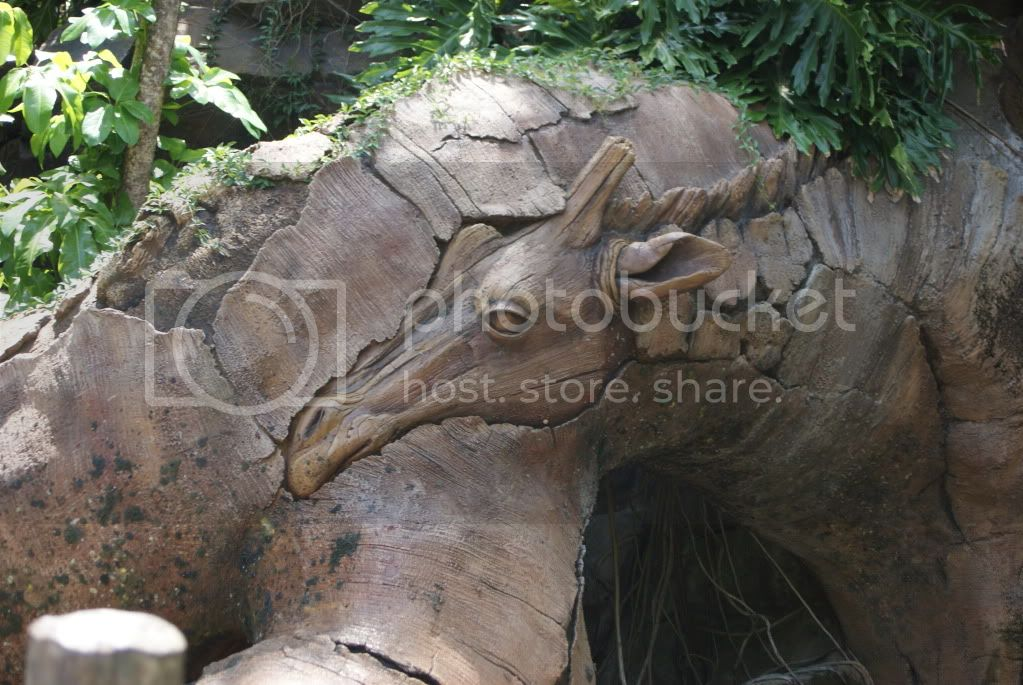 [Walt Disney World Resort] Voyage du 24 juillet au 12 aout 2010 - Page 2 DSC00242