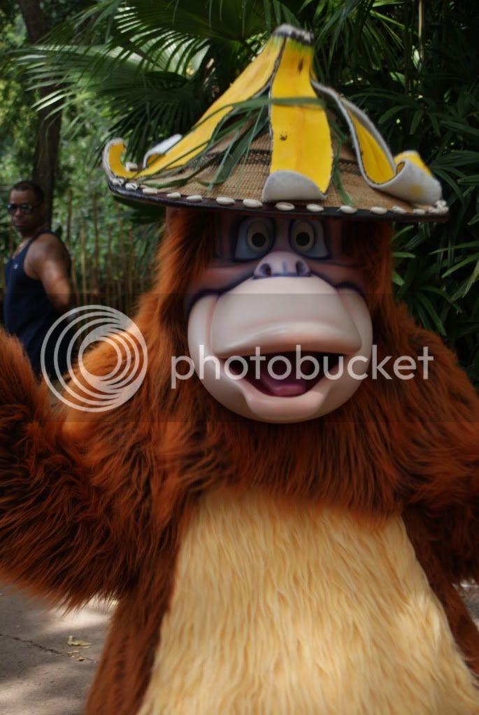 [Walt Disney World Resort] Voyage du 24 juillet au 12 aout 2010 - Page 2 DSC00297