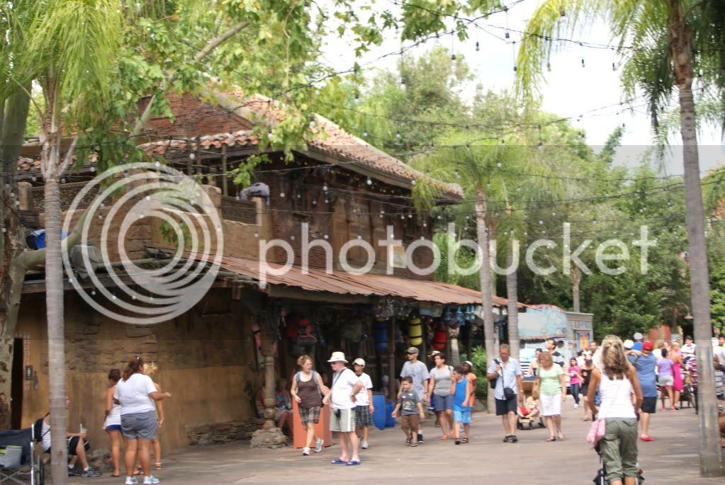 [Walt Disney World Resort] Voyage du 24 juillet au 12 aout 2010 - Page 2 DSC00408