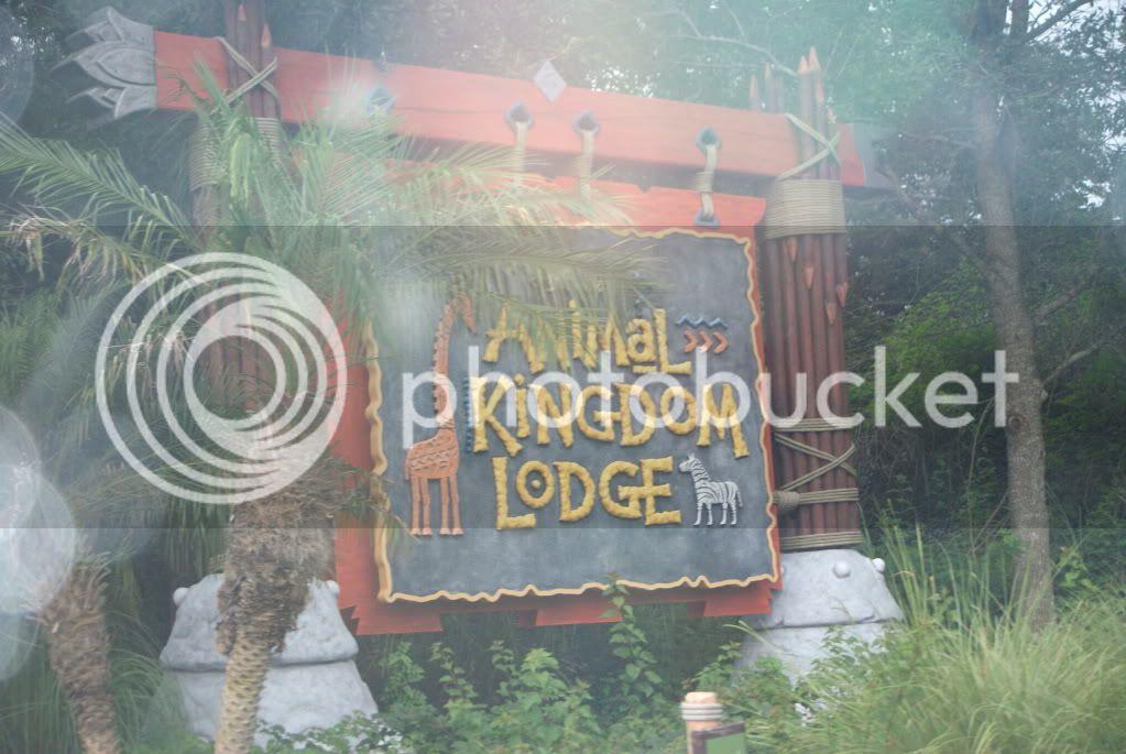 [Walt Disney World Resort] Voyage du 24 juillet au 12 aout 2010 - Page 2 DSC00439