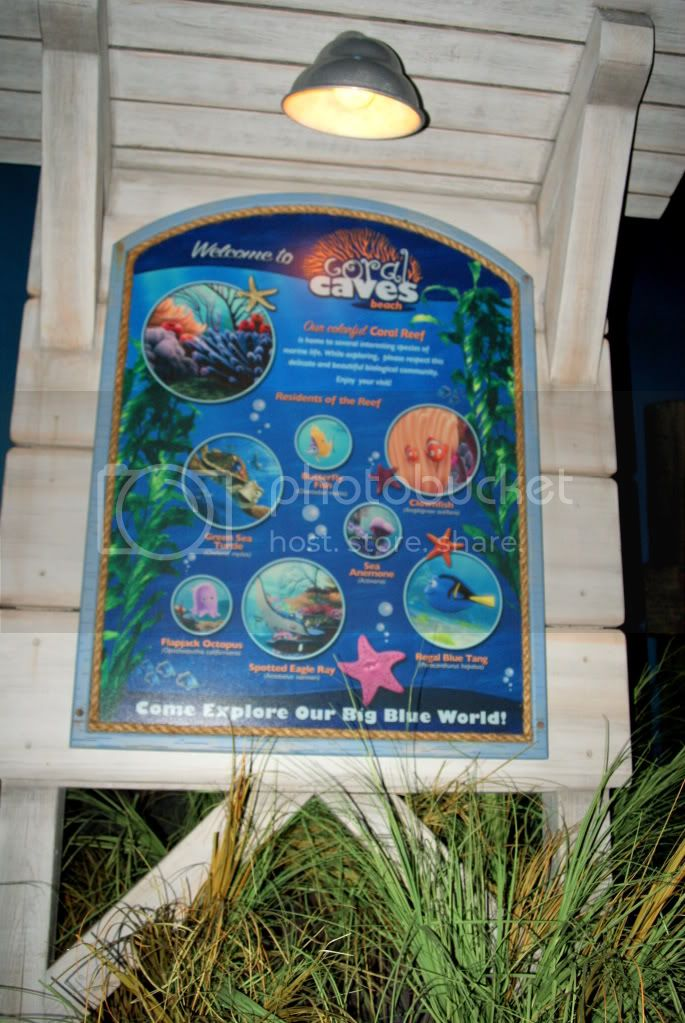 [Walt Disney World Resort] Voyage du 24 juillet au 12 aout 2010 - Page 2 DSC00589