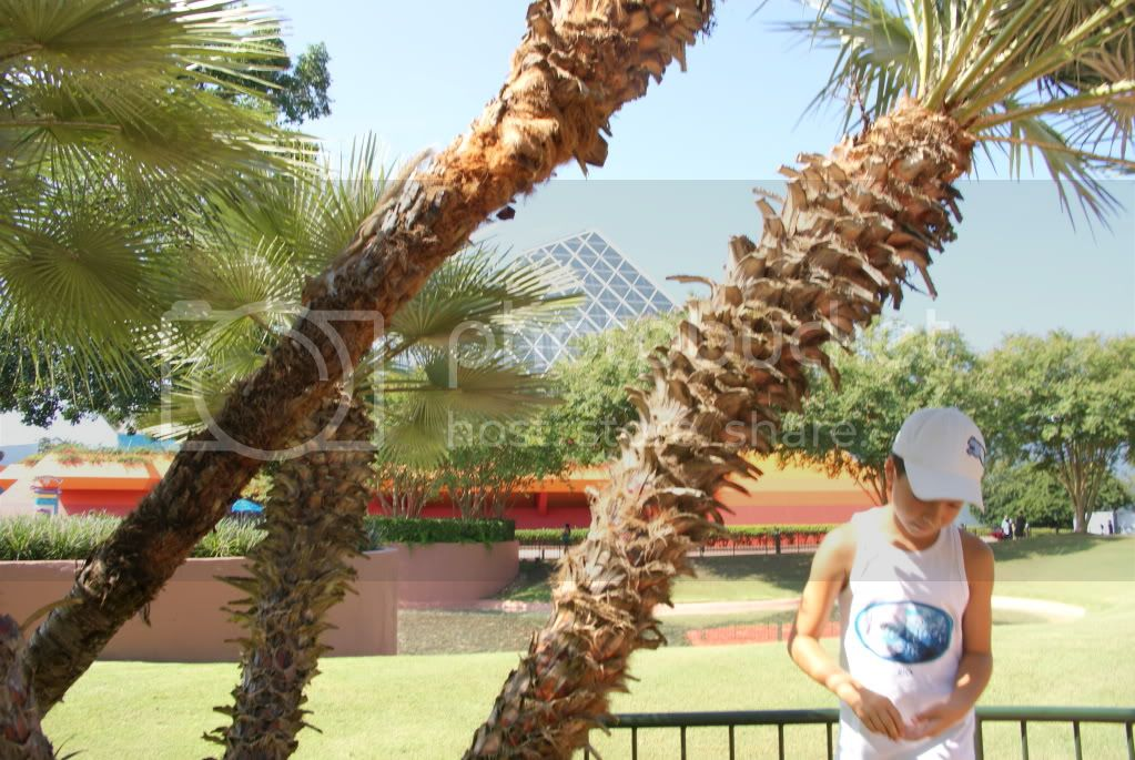 [Walt Disney World Resort] Voyage du 24 juillet au 12 aout 2010 - Page 2 DSC00672