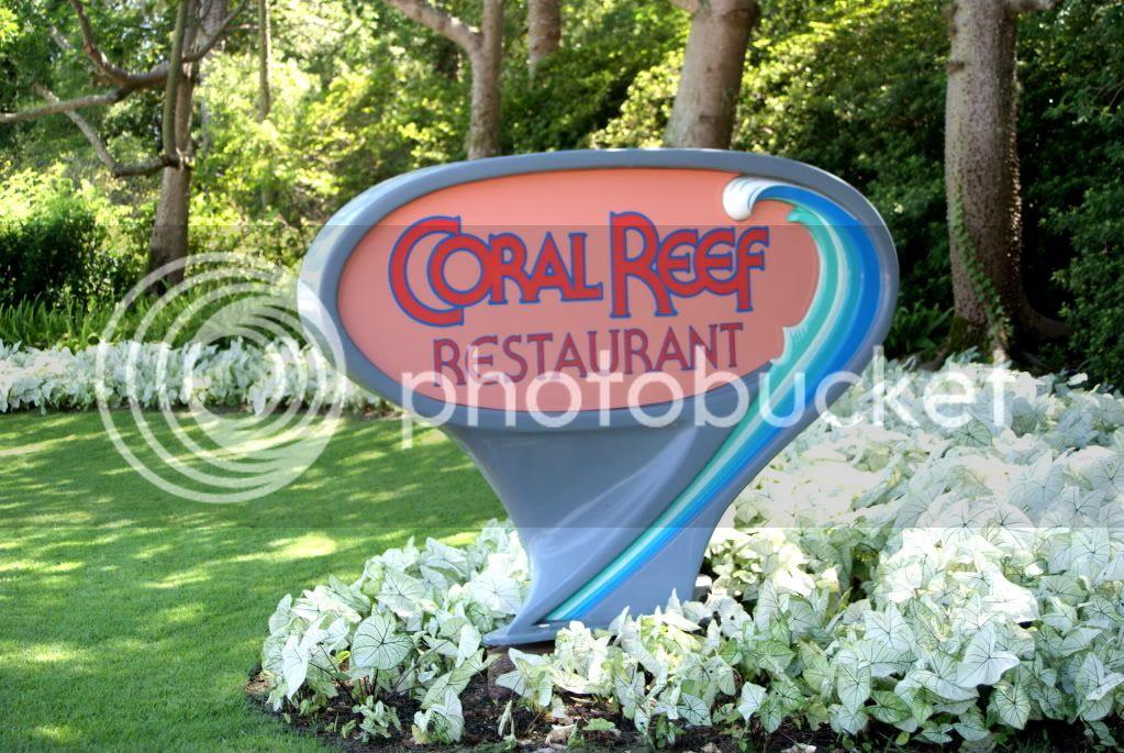 [Walt Disney World Resort] Voyage du 24 juillet au 12 aout 2010 - Page 2 DSC00720