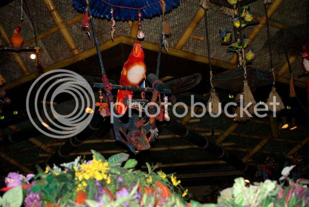 [Walt Disney World Resort] Voyage du 24 juillet au 12 aout 2010 - Page 3 DSC01273