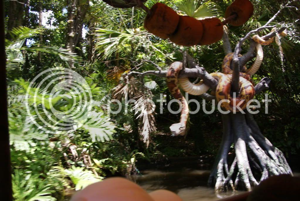 [Walt Disney World Resort] Voyage du 24 juillet au 12 aout 2010 - Page 3 DSC01324