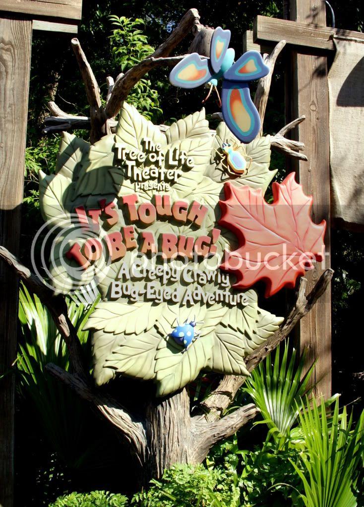 [Walt Disney World Resort] Voyage du 24 juillet au 12 aout 2010 - Page 3 DSC01576
