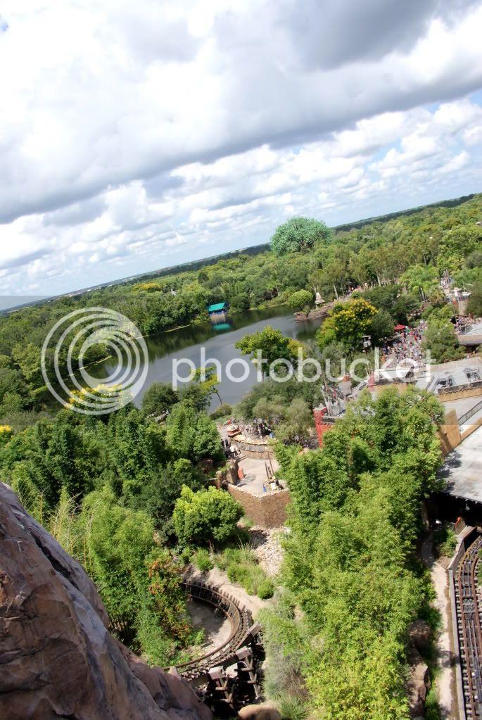 [Walt Disney World Resort] Voyage du 24 juillet au 12 aout 2010 - Page 3 DSC01611