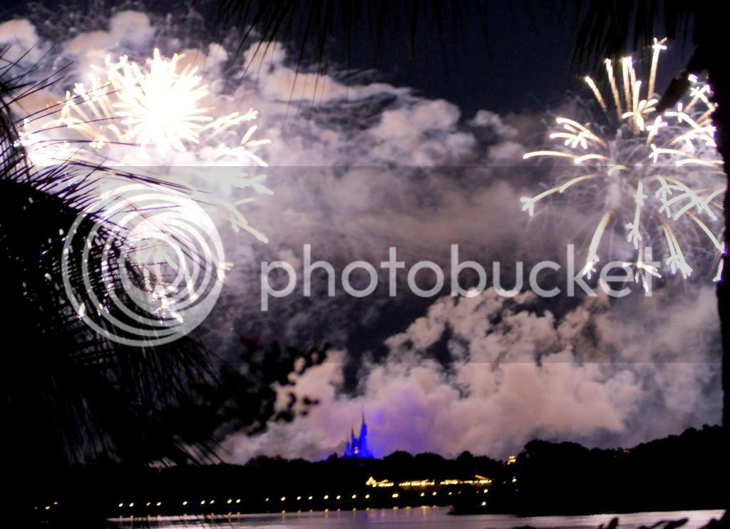 [Walt Disney World Resort] Voyage du 24 juillet au 12 aout 2010 - Page 3 DSC02091