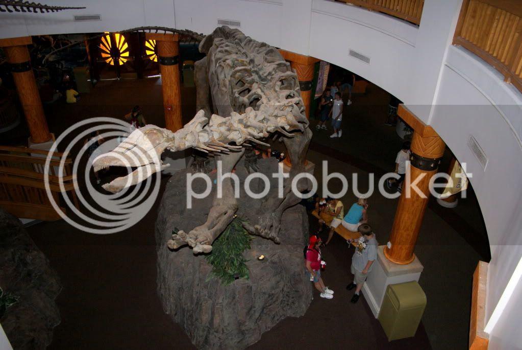 [Walt Disney World Resort] Voyage du 24 juillet au 12 aout 2010 DSC02876