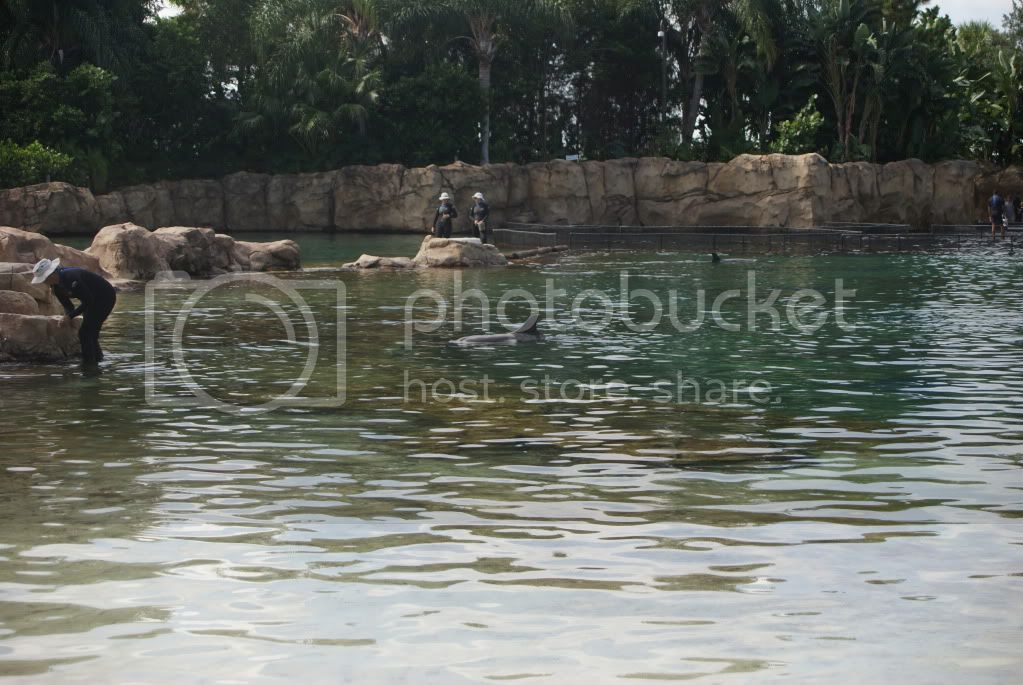 [Walt Disney World Resort] Voyage du 24 juillet au 12 aout 2010 DSC03256
