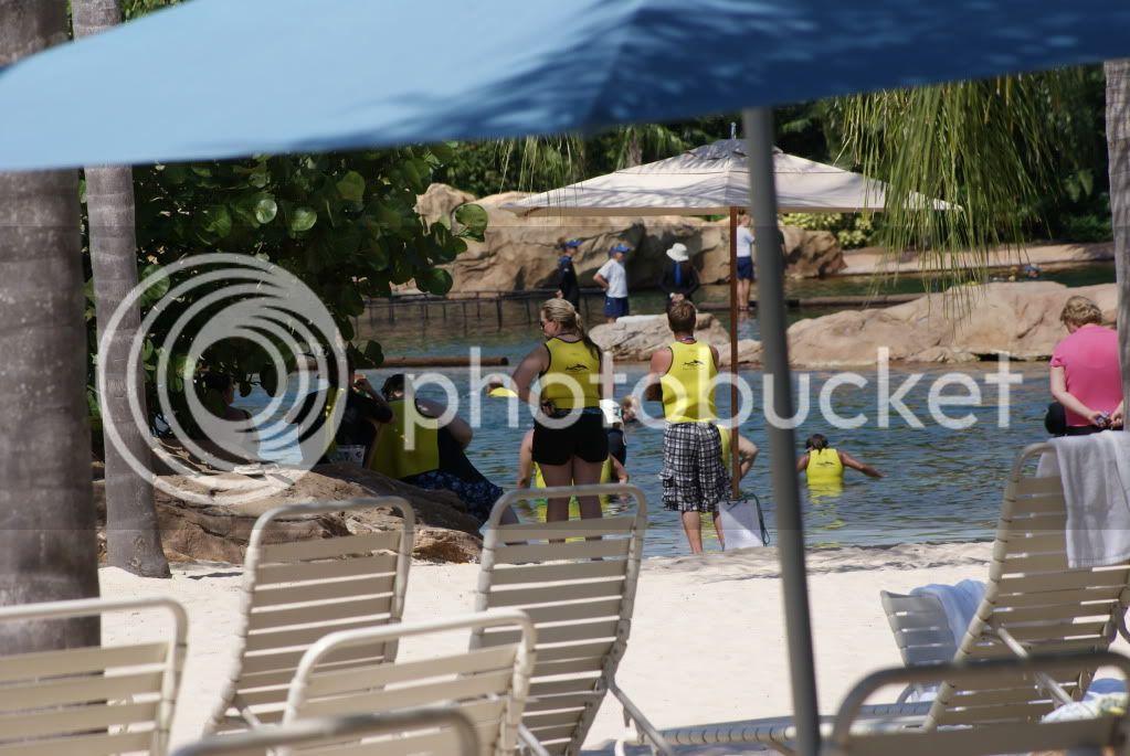 [Walt Disney World Resort] Voyage du 24 juillet au 12 aout 2010 DSC03267