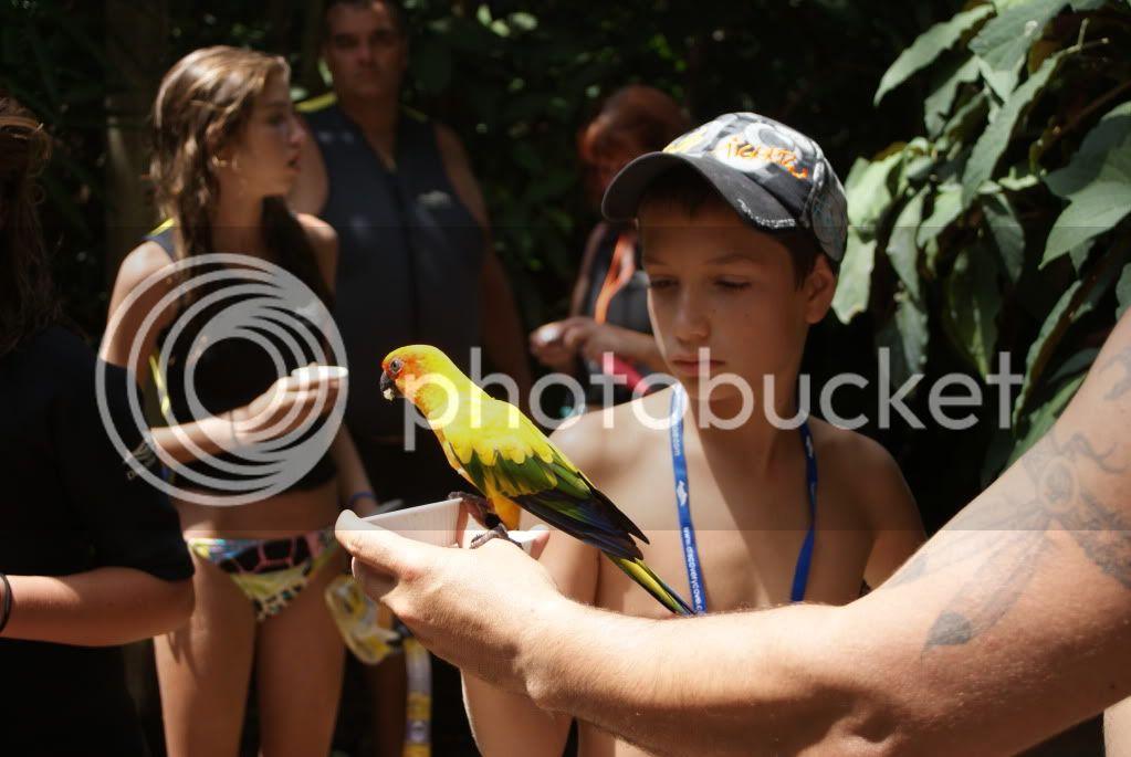 [Walt Disney World Resort] Voyage du 24 juillet au 12 aout 2010 DSC03369