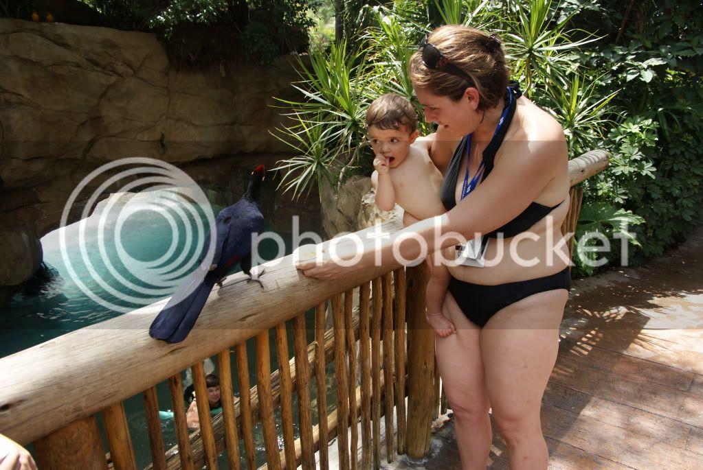 [Walt Disney World Resort] Voyage du 24 juillet au 12 aout 2010 DSC03374