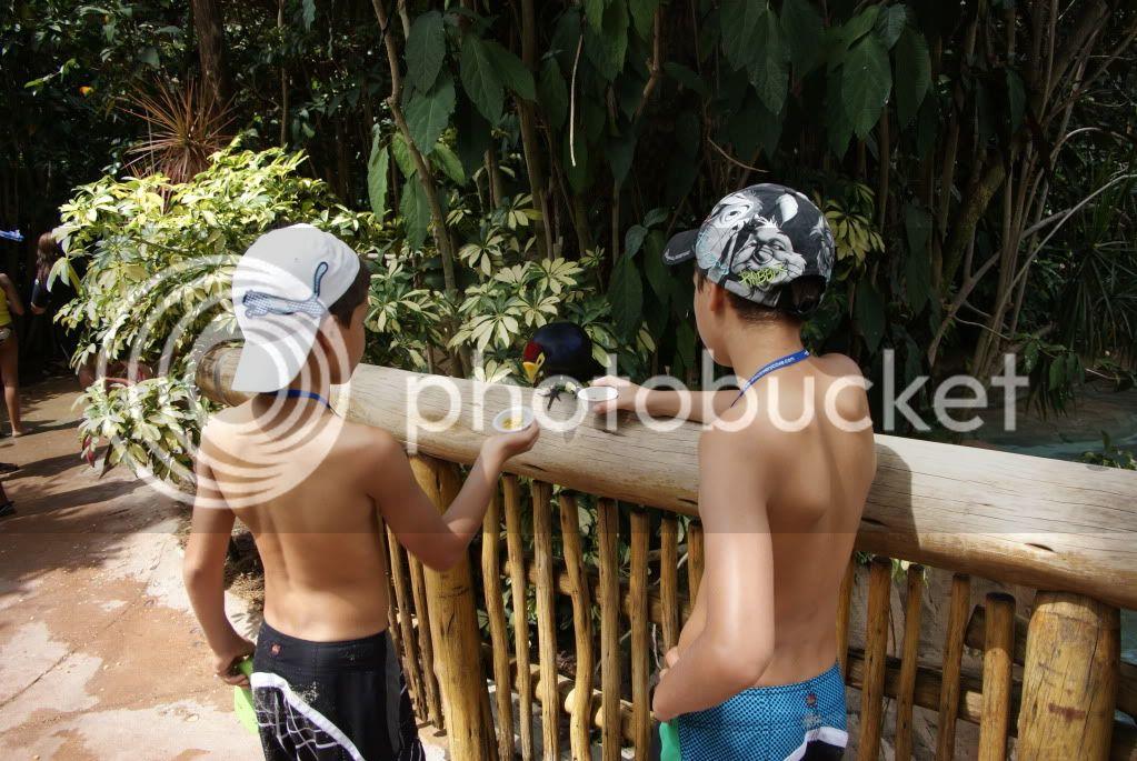 [Walt Disney World Resort] Voyage du 24 juillet au 12 aout 2010 DSC03395