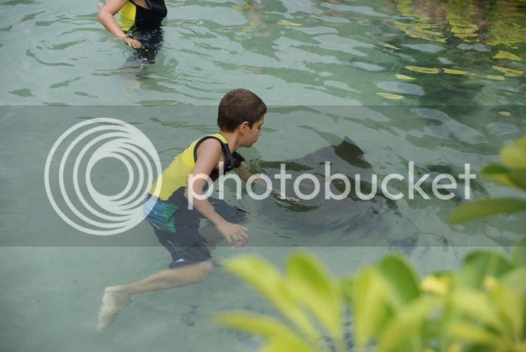 [Walt Disney World Resort] Voyage du 24 juillet au 12 aout 2010 DSC03441