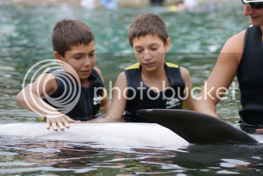 [Walt Disney World Resort] Voyage du 24 juillet au 12 aout 2010 DSC03546