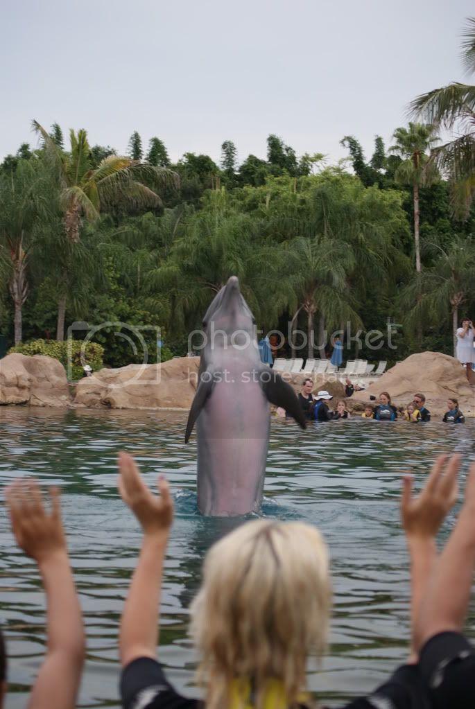 [Walt Disney World Resort] Voyage du 24 juillet au 12 aout 2010 DSC03579