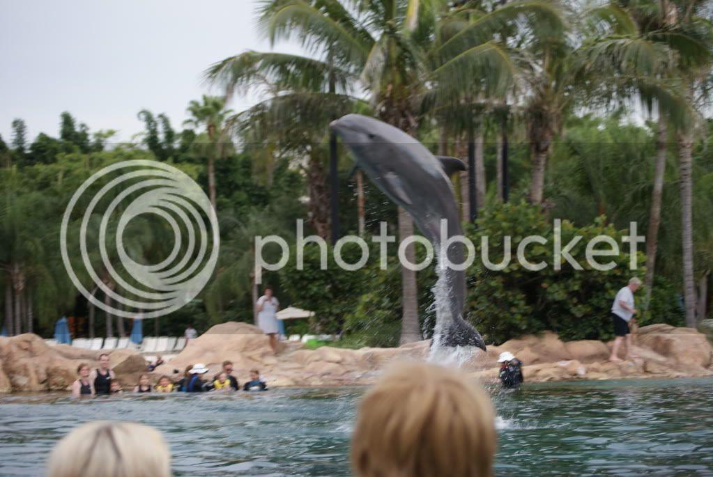 [Walt Disney World Resort] Voyage du 24 juillet au 12 aout 2010 DSC03586