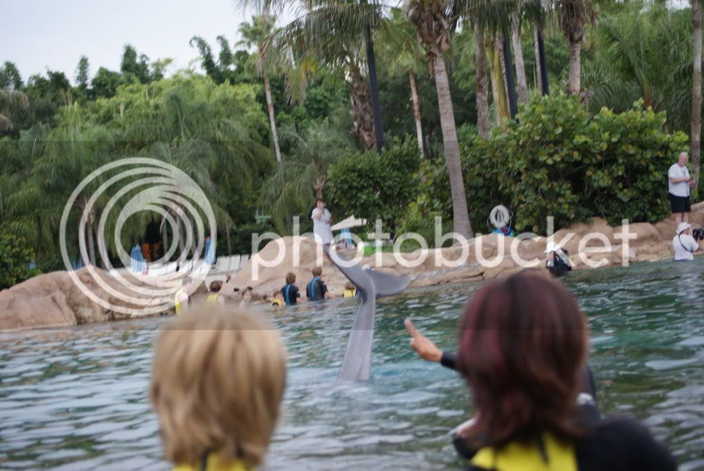 [Walt Disney World Resort] Voyage du 24 juillet au 12 aout 2010 DSC03590