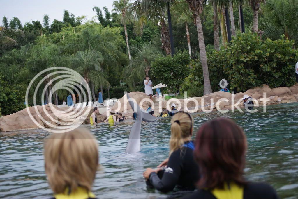 [Walt Disney World Resort] Voyage du 24 juillet au 12 aout 2010 DSC03592