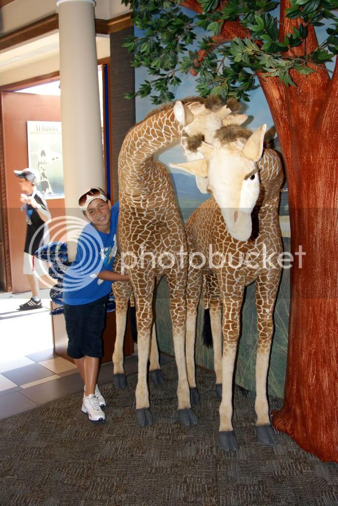[Walt Disney World Resort] Voyage du 24 juillet au 12 aout 2010 DSC03646