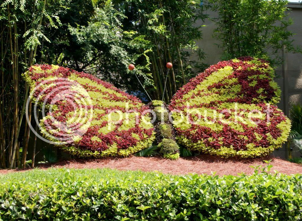 [Walt Disney World Resort] Voyage du 24 juillet au 12 aout 2010 DSC03692