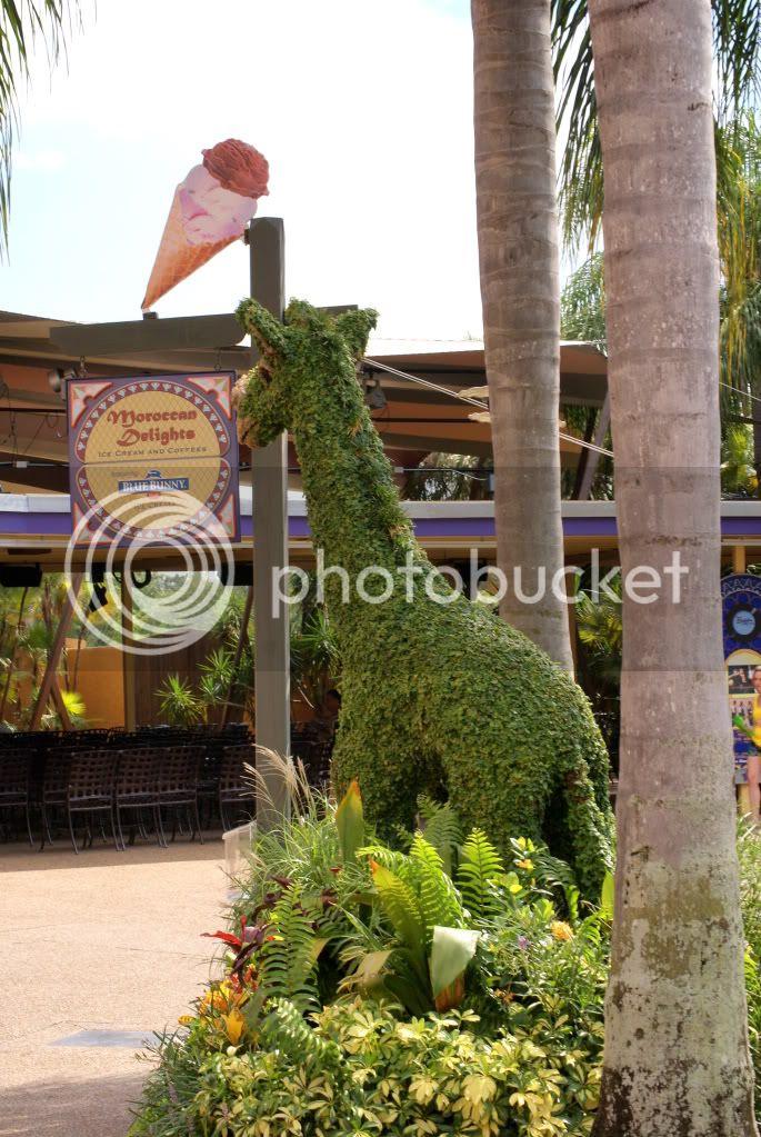[Walt Disney World Resort] Voyage du 24 juillet au 12 aout 2010 DSC03891