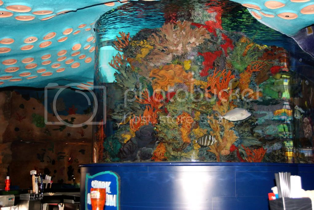 [Walt Disney World Resort] Voyage du 24 juillet au 12 aout 2010 DSC04219