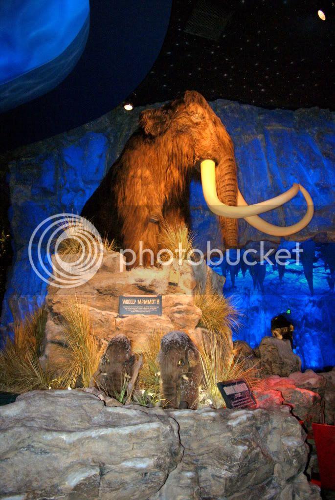 [Walt Disney World Resort] Voyage du 24 juillet au 12 aout 2010 DSC04221