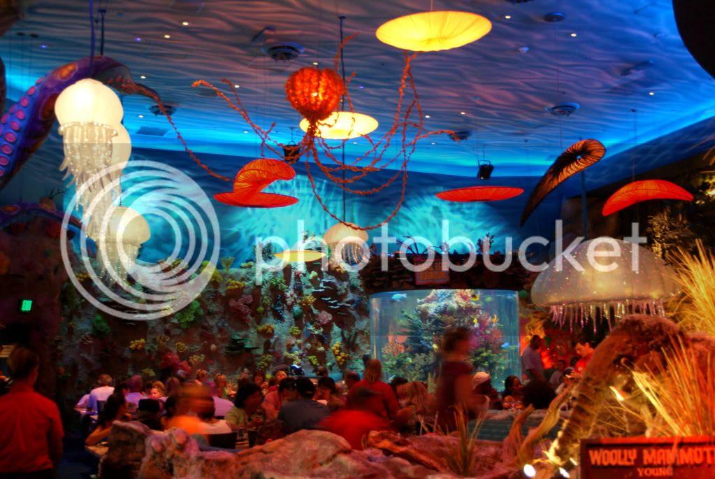 [Walt Disney World Resort] Voyage du 24 juillet au 12 aout 2010 DSC04297