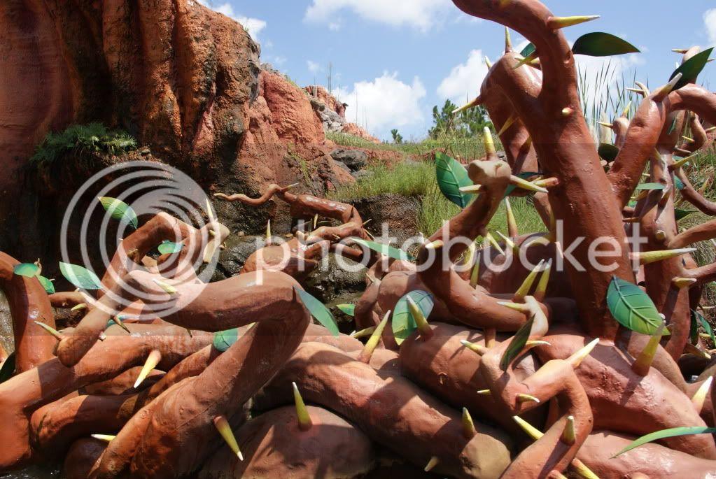 [Walt Disney World Resort] Voyage du 24 juillet au 12 aout 2010 - Page 2 DSC04621