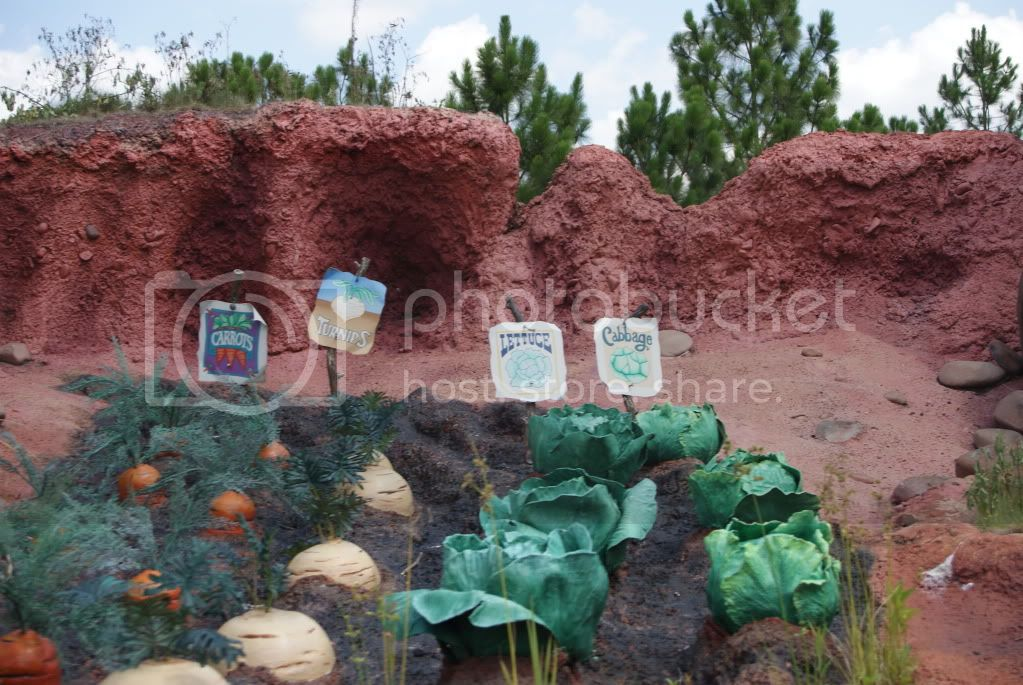 [Walt Disney World Resort] Voyage du 24 juillet au 12 aout 2010 - Page 2 DSC04625