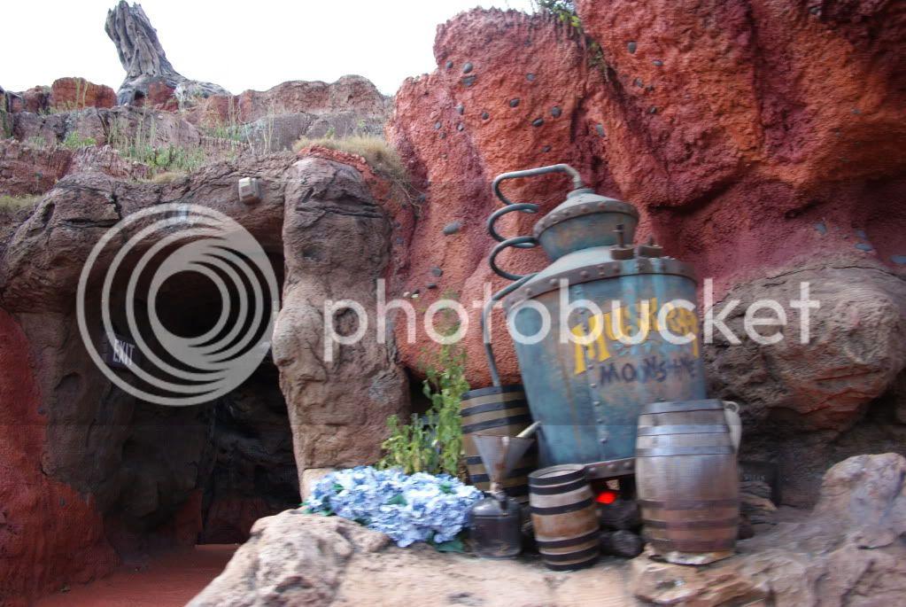 [Walt Disney World Resort] Voyage du 24 juillet au 12 aout 2010 - Page 2 DSC04629
