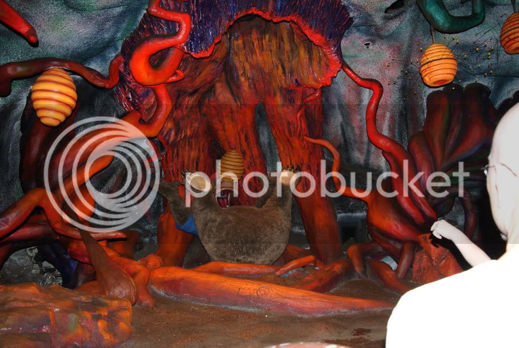 [Walt Disney World Resort] Voyage du 24 juillet au 12 aout 2010 - Page 2 DSC04651