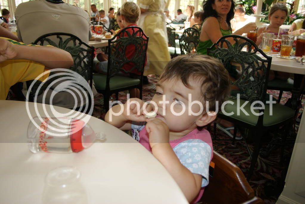 [Walt Disney World Resort] Voyage du 24 juillet au 12 aout 2010 - Page 2 DSC04708