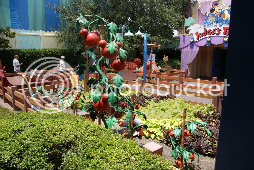 [Walt Disney World Resort] Voyage du 24 juillet au 12 aout 2010 - Page 2 DSC04753