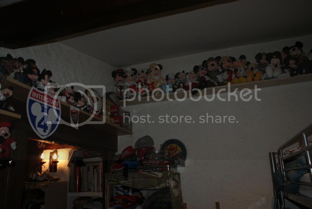 [Walt Disney World Resort] Voyage du 24 juillet au 12 aout 2010 - Page 5 DSC05995