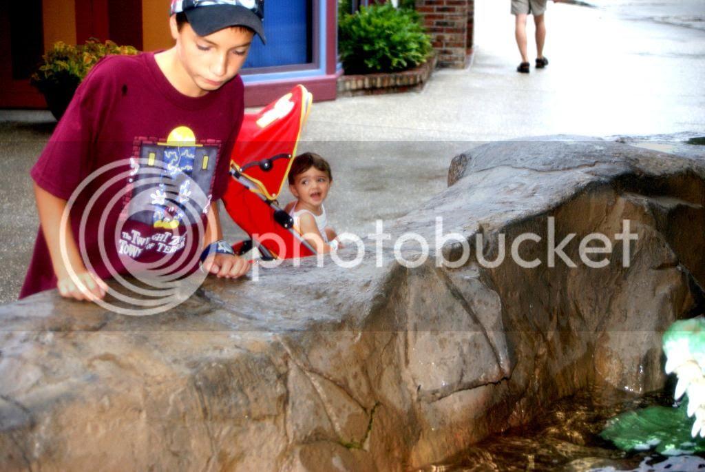 [Walt Disney World Resort] Voyage du 24 juillet au 12 aout 2010 - Page 4 DSC03336