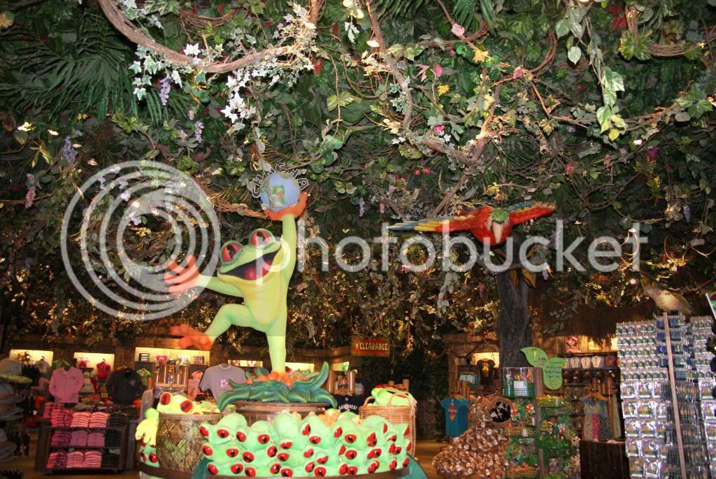 [Walt Disney World Resort] Voyage du 24 juillet au 12 aout 2010 - Page 4 DSC03353