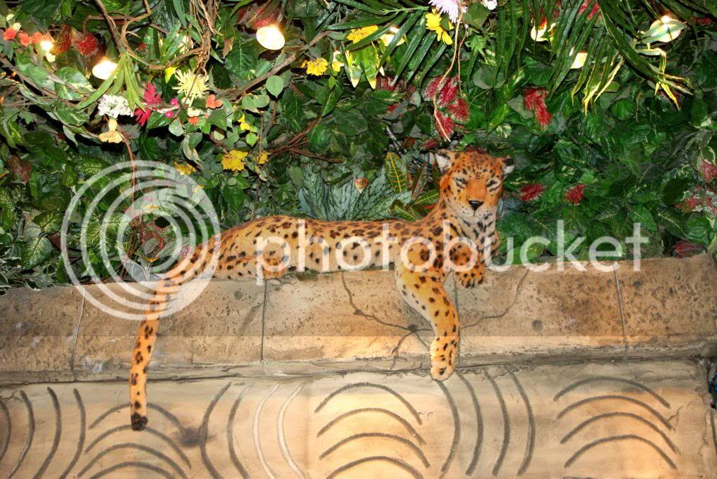 [Walt Disney World Resort] Voyage du 24 juillet au 12 aout 2010 - Page 4 DSC03359