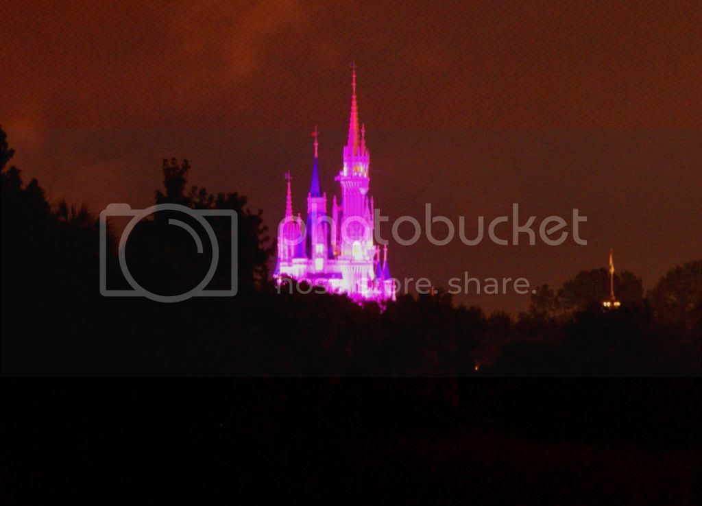 [Walt Disney World Resort] Voyage du 24 juillet au 12 aout 2010 - Page 4 DSC03845