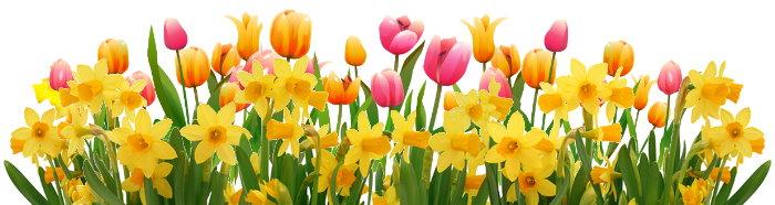 Галерея выпускников Весна 82c13e5178680a6638fcae0807f51c32