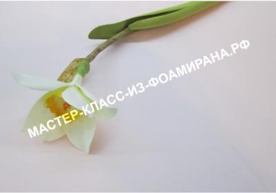 Фоамиран - Страница 2 9c5a6857353660f1681c2fd025679ed5