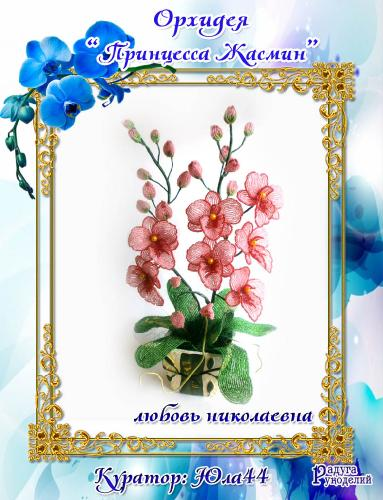 "Галерея выпускников: Орхидея ""Принцесса Жасмин"" 6dd9e48cb420ec21e0a1400525b4c382"