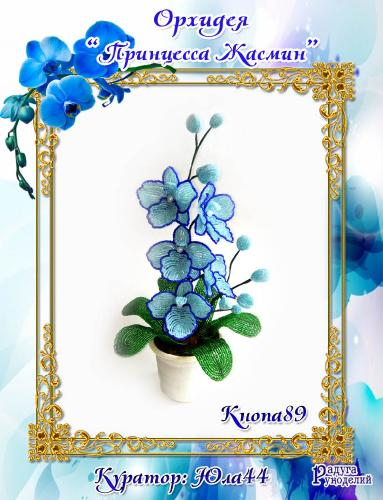 """Галерея выпускников: Орхидея """"Принцесса Жасмин"""" B8bc2c6bcb243101fbfc7d2e2fd0f7b9"""